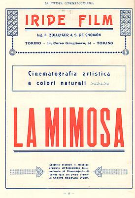La Mimosa, produzione Iride Film