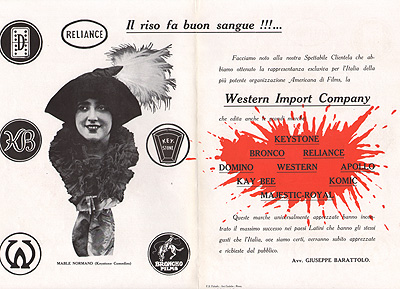Western Import Company