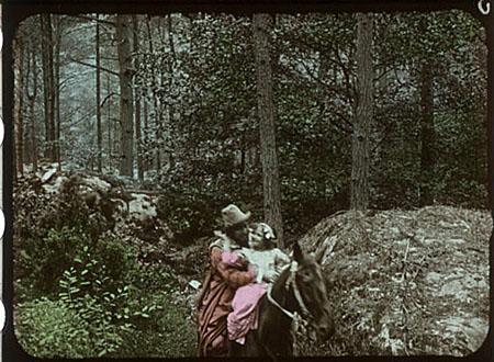 I bambini nella foresta 1912
